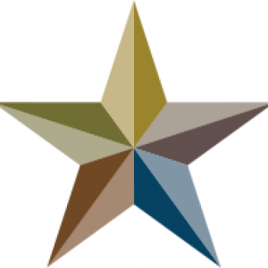 cropped-star-icon.png